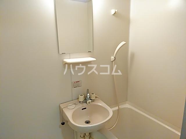 ピュアメゾン 2-E号室の洗面所