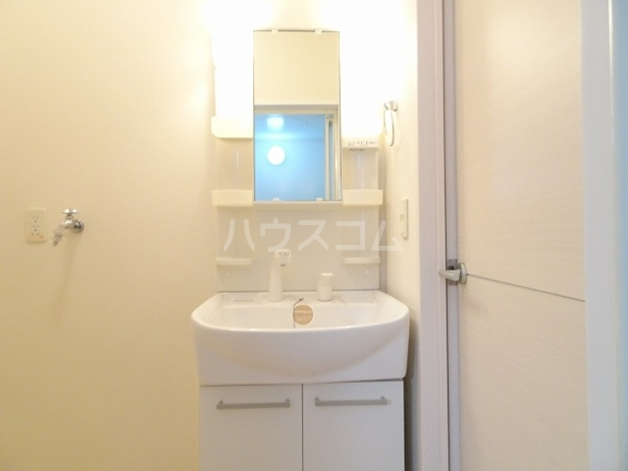 メゾン グラフォートB 101号室の洗面所