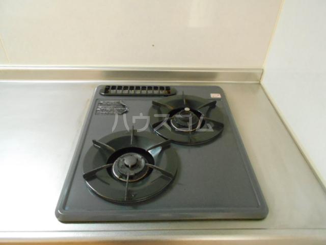 第ニ大泉サンハイツ 202号室のキッチン