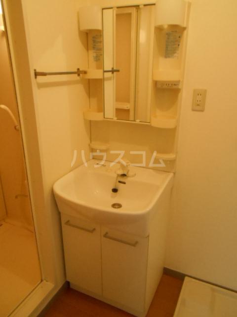 第ニ大泉サンハイツ 202号室の洗面所