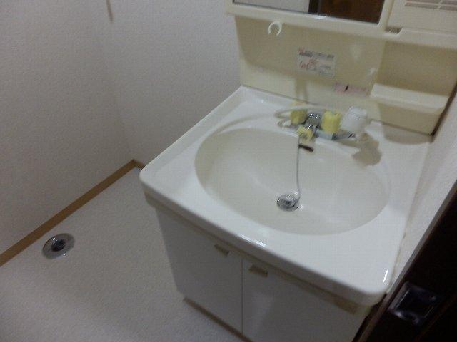 プロビデンス日比野 2D号室の洗面所