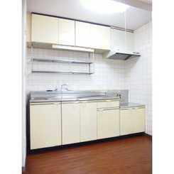 ルミエール片山 502号室のキッチン