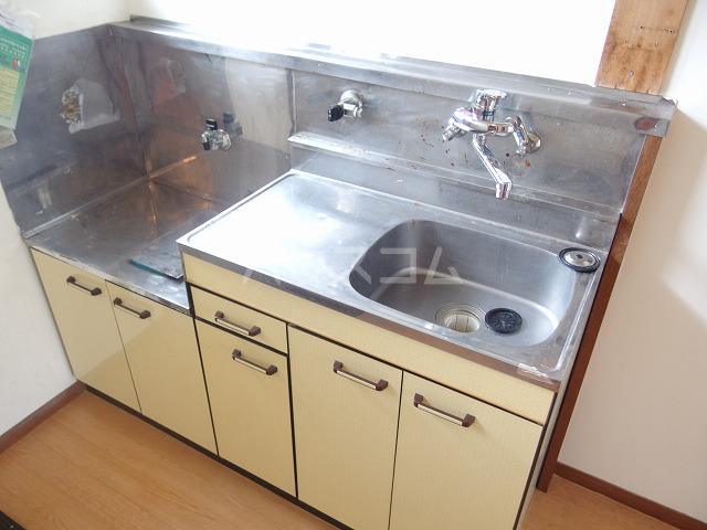 第二唐沢コーポ 201号室のキッチン