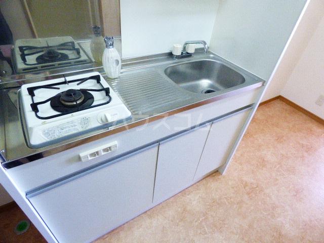 ドゥミル津田沼 206号室のキッチン