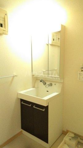 ルミエール 01010号室の洗面所
