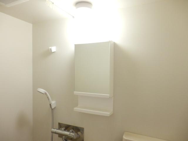 ハイツトーカンドー 405号室の洗面所