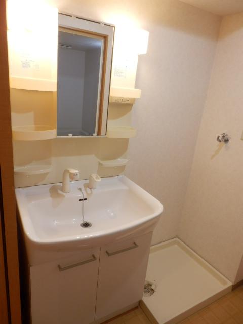 エターナル 303号室の洗面所