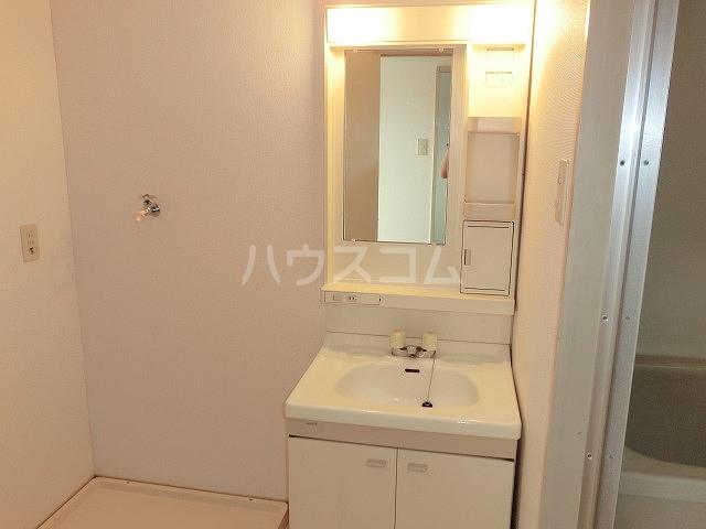 ロイヤルハイツ 02030号室の洗面所