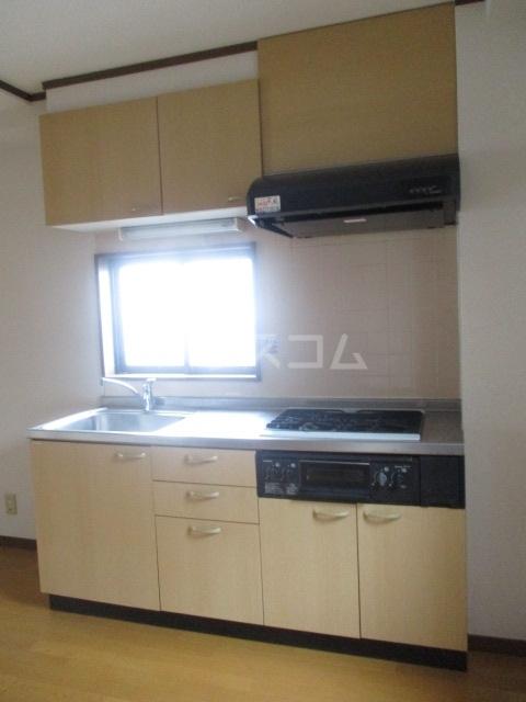 ブリリアントコート 203号室のキッチン
