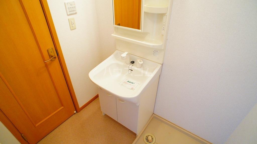 セレブリテ・メゾンA 02040号室の洗面所