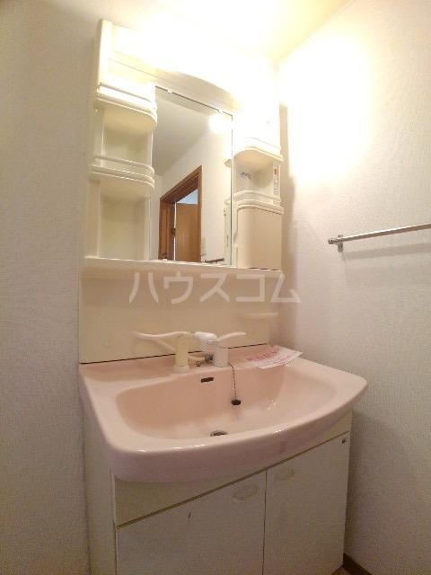 アネックス司 02030号室の洗面所