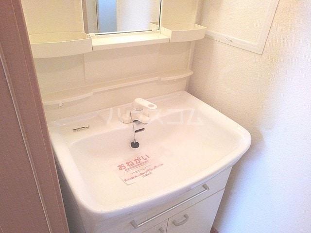 サウスウィング味美 02010号室の洗面所