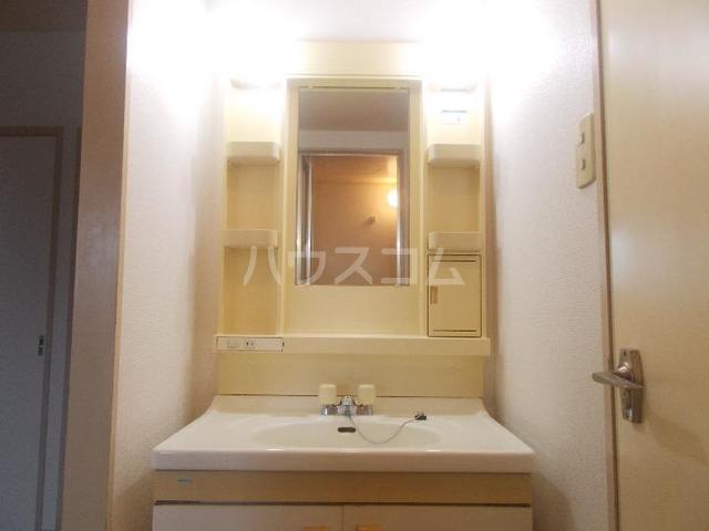 ハイツ長池上 02030号室の洗面所