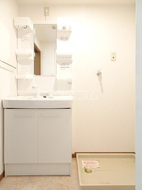 ラフィーネ美術館前 02010号室の洗面所