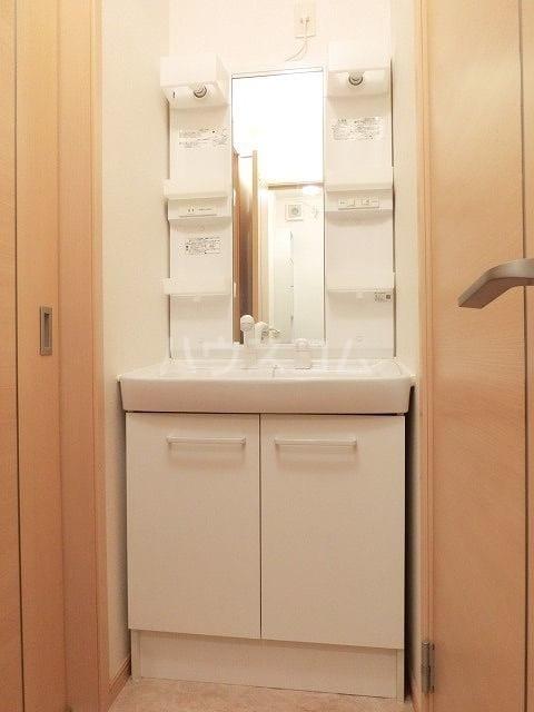 大東ヒルズ 01040号室の洗面所