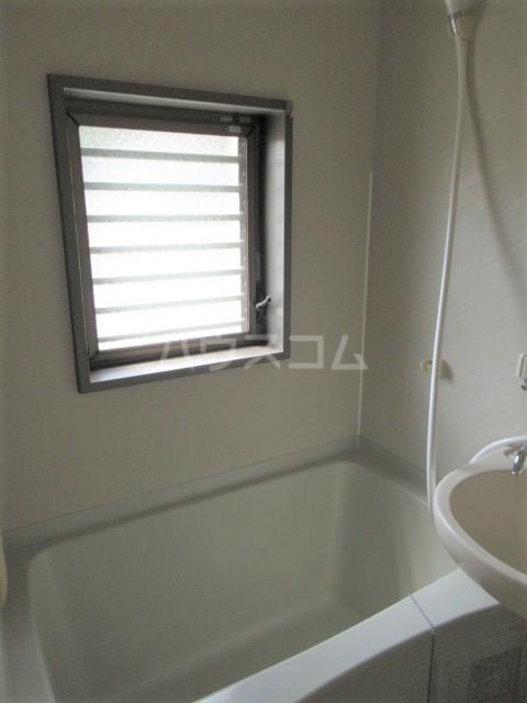 ヒットビット向ヶ丘 203号室の風呂