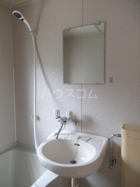 ヒットビット向ヶ丘 203号室の洗面所