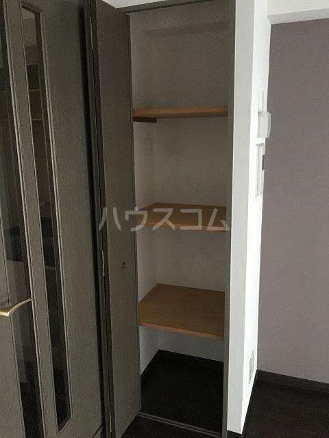 ライオンズプラザ平塚宝町 201号室の収納