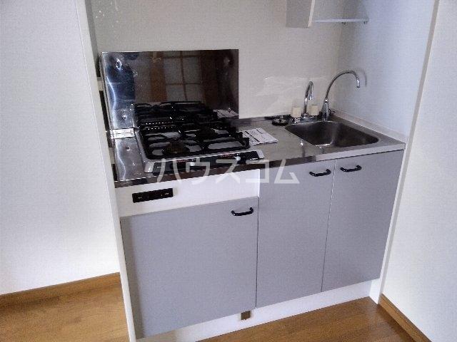 アムールグリシーヌ 302号室のキッチン