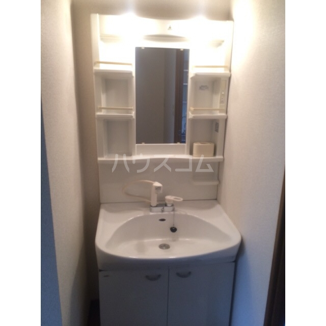 アムール 雅 105号室の洗面所