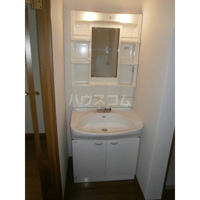 アムール 雅 106号室の洗面所