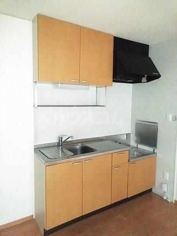 ミレニアムK2 A 102号室のキッチン