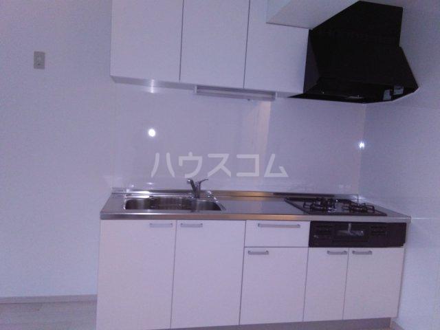 平楽園一番館 205号室のキッチン