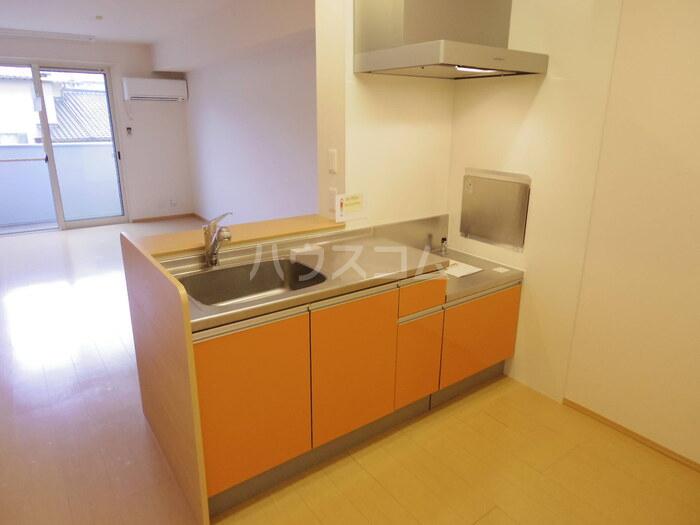 Waser Vogel(ヴァッサー フォーゲル) 202号室のキッチン