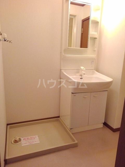 セルヴィールB 01020号室の洗面所