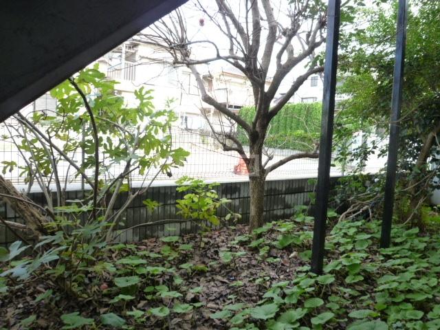 コーポ栄 201号室の庭