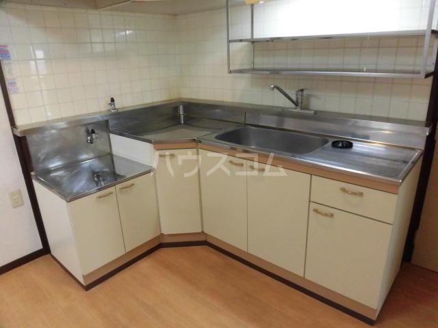 ロイヤルメゾンHAMADA 603号室のキッチン