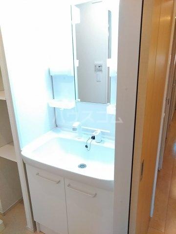 ヴィラ・ウエノ 01010号室の洗面所