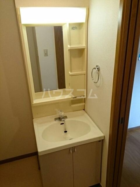 グリーンコーポB 01030号室の洗面所
