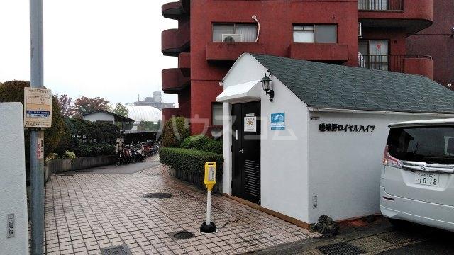 嵯峨野ロイヤルハイツ 405号室のエントランス