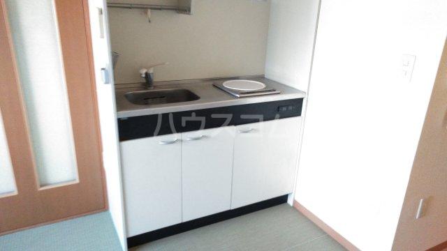 嵐山グランツガルテン 202号室のキッチン