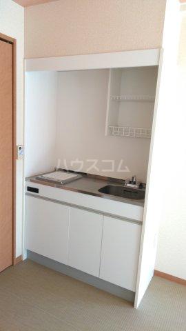 嵐山グランツガルテン 206号室のキッチン