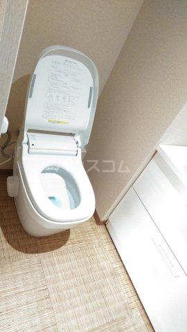嵐山グランツガルテン 206号室のトイレ