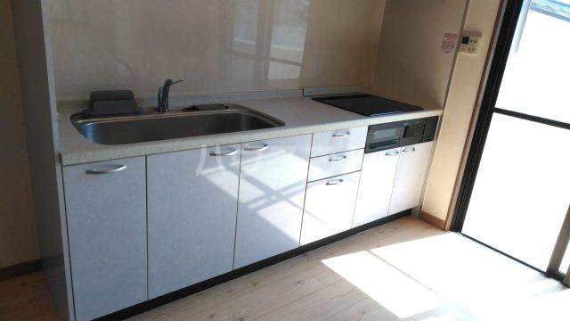 嵐山グランツガルテン 304号室のキッチン