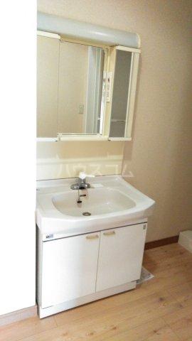 嵐山グランツガルテン 304号室の洗面所