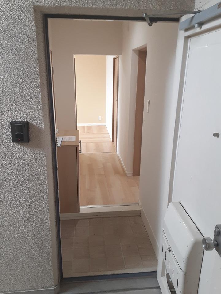 武田マンション 106号室の玄関
