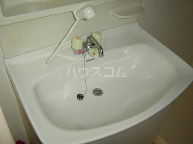 ヴァンベール文ヶ岡Ⅱ 202号室の洗面所