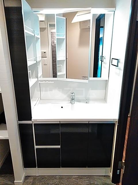 レジディア目白 704号室の洗面所