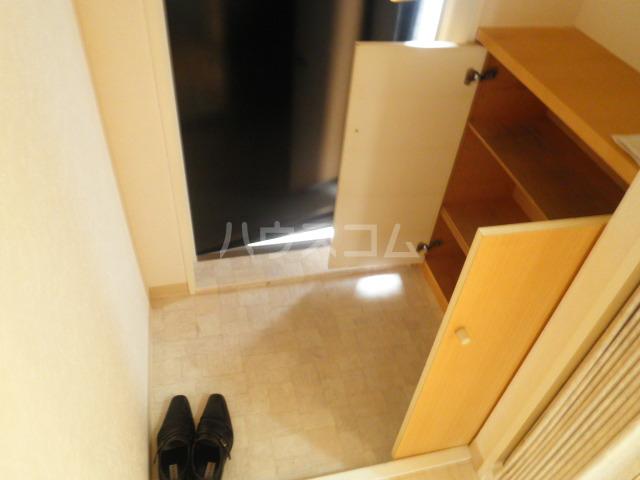 マスターズエル綾園20 205号室の玄関