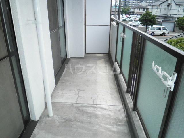 マスターズエル綾園20 205号室のバルコニー