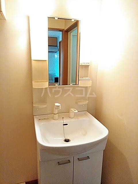 是空 303号室の洗面所