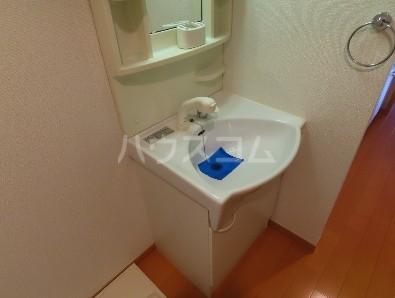 コンフィアンサ等々力 304号室の洗面所