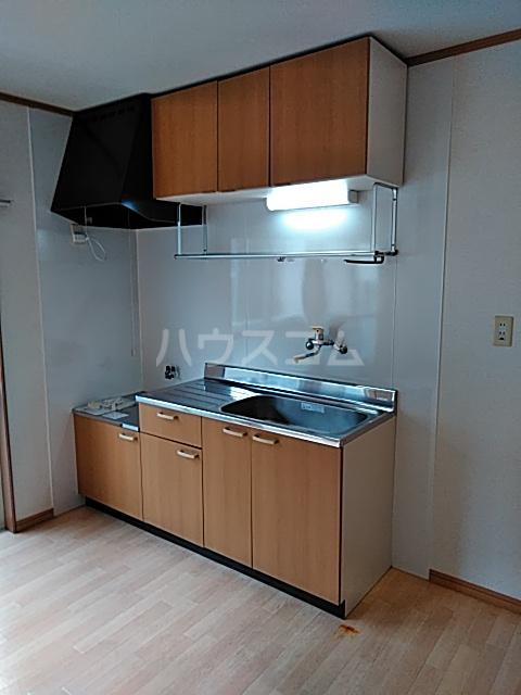 ハイツ早明 203号室のキッチン
