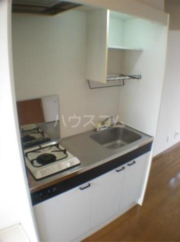 ベルグレース桜新町 201号室のキッチン