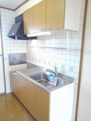 エターナル・パレスC 02010号室のキッチン