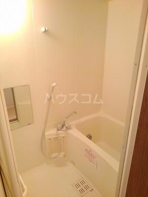 エターナル・パレスC 02010号室の風呂
